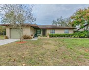 1239 Oak Valley Drive, Seffner image