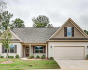 205 Nearmeadows Way, Simpsonville image