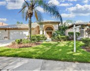 17827 Osprey Pointe Place, Tampa image