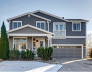3975 Brushwood Way, Castle Rock image