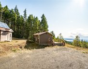 2351 N Dow Mountain Rd, Hoodsport image