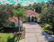 16336 Heathrow Drive, Tampa image