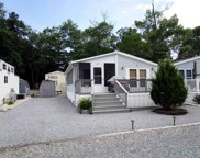 113 Whale Beach Ave @ Holly Lake, Dennisville image