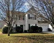 12316  Greenway View Court, Charlotte image