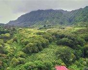 4155 Nuuanu Pali Drive, Honolulu image