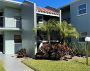 2836 Somerset Park Drive Unit 101, Tampa image