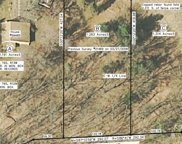 59485 County Line - Parcel B Road, Three Rivers image
