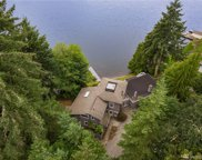3815 Walthew Dr SE, Lacey image