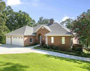 119 Shoals Circle, Townville image
