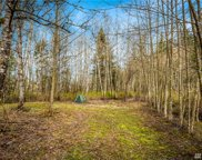 3788 Birch Bay Lynden Rd, Custer image