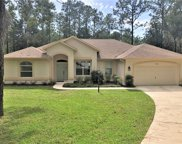 9005 SW Sw 204th Circle Circle, Dunnellon image