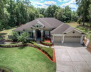 9407 Joe Ebert Road, Seffner image