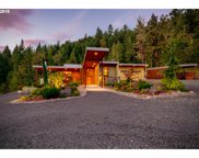 84819 SARVIS BERRY  LN, Eugene image