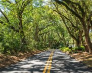 Old Eustis Road, Mount Dora image