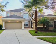 10103 Evergreen Hill Drive, Tampa image