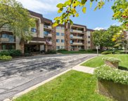 3350 North Carriageway Drive Unit 314, Arlington Heights image