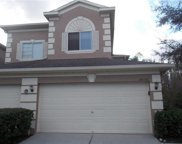 18150 Nassau Point Drive, Tampa image