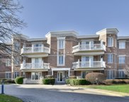 1875 Old Willow Road Unit 114, Northfield image