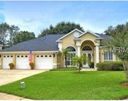 601 Golden Dawn Lane, Apopka image