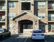 10751 South Twenty Mile Road Unit 207, Parker image