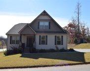 125 Amber Oaks Drive, Greer image