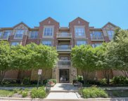 1781 Tudor Lane Unit 209, Northbrook image
