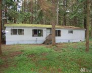 8575 Ginkgo Dr, Maple Falls image