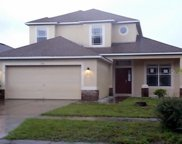 7921 Moccasin Trail Drive, Riverview image