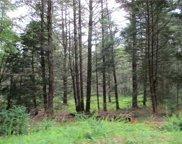 Upper Pine Kill  Road, Wurtsboro image