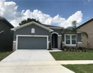 17142 Gathering Place Circle, Clermont image