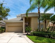 904 Anchorage Road, Tampa image