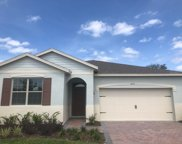 3671 Beautyberry Way, Clermont image