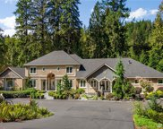 8271 316th Lane SE, Issaquah image