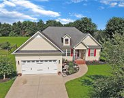 1117 Steele Meadows  Drive, Fort Mill image