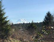 37606 Mountain Highway E, Eatonville image