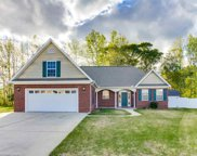 217 White Water Loop, Conway image