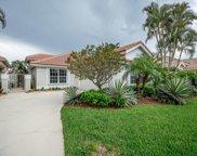 210 Eagleton Lake Boulevard, Palm Beach Gardens image