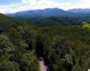 Lot Lot 35 Riversong Way, Sevierville image