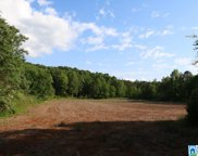 Ragans Ln Unit 83 Acres, Sycamore image