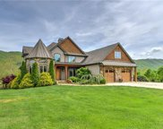 124  Cane Creek Ranch Drive, Fletcher image