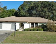 1402 Haulover Avenue, Spring Hill image