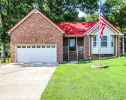 209 Priest View Dr, Smyrna image