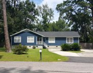 3005 Palmetto Ridge  Street, Beaufort image