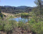 4455 Mt. Home Ranch  Road, Calistoga image
