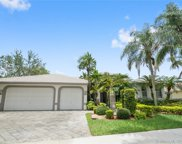 2536 Eagle Run Dr, Weston image
