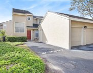13022 Arborview Place, Tampa image