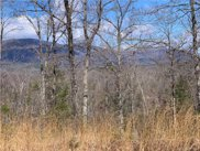 999 Lake Adger  Parkway Unit #66, Mill Spring image