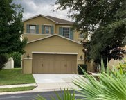 11103 Silver Fern Way, Riverview image