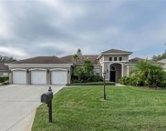 3003 Forest Hammock Drive, Plant City image