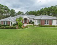 11137 Woodland Waters Boulevard, Weeki Wachee image